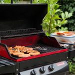 Advances tips for Grilling